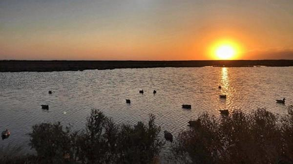 Thanking You All, Happy Thanksgiving!